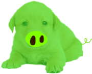 Puppig