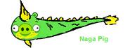 Naga pig