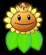 Queen Sunflower