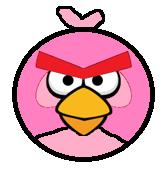 Kanon Bird Front
