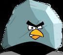 Boulder Bird