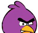Angriest Bird