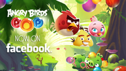 Angry Birds POP! - Poster Facebook