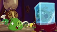 Cave Pig 03