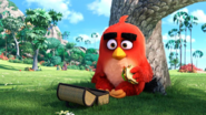 The Angry Birds Movie - Red 01