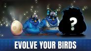 Angry Birds Evolution Myles