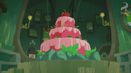 Another Birthday 10