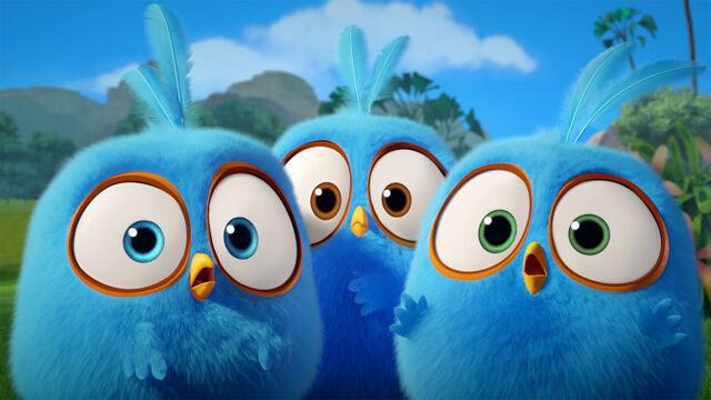 File:Blue Birds.jpg