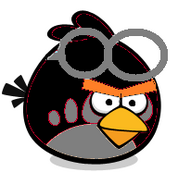 Black Goggle Bird