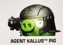Agent-Kallus