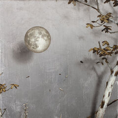The Moon Room