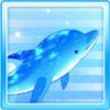 Star Dolphin Blue