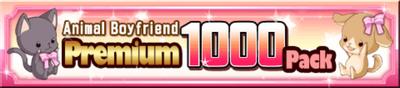 Premium1000pack