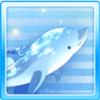 Star Dolphin White