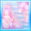 Hibiscus Shower