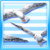 Flying Colony Of Seagulls Type 1