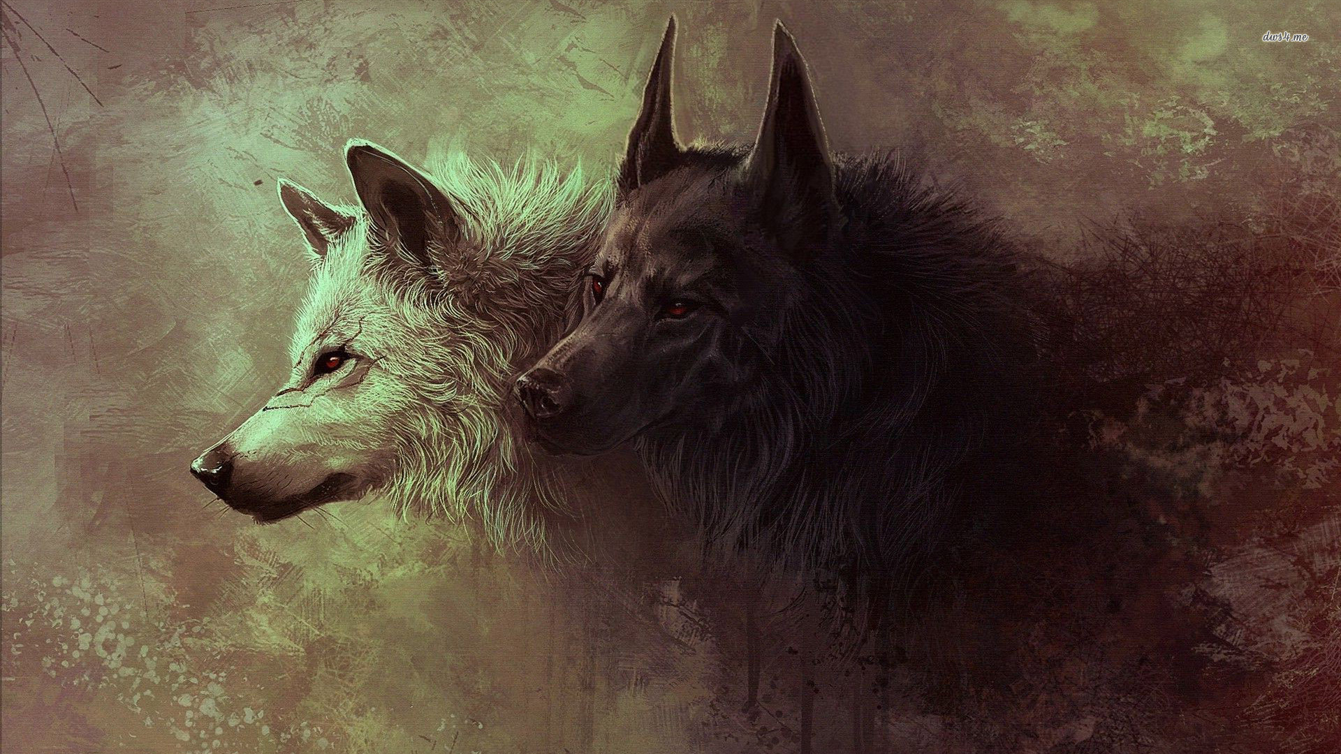 Black And White Wolves Wallpaper Artistic Wallpapers 18627