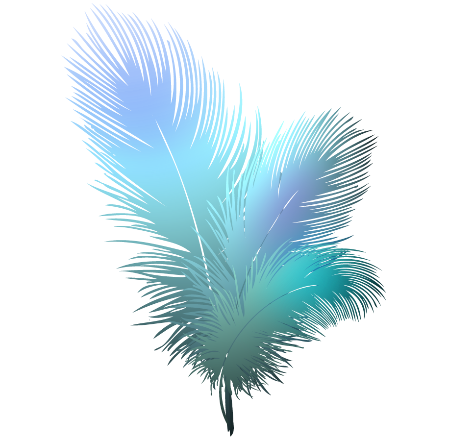 image 89e540fb45f27b1f4c327d867d3fd906 feathers clipart feathers rh animal jam clans wikia com free clipart with transparent background clip art with transparent background free
