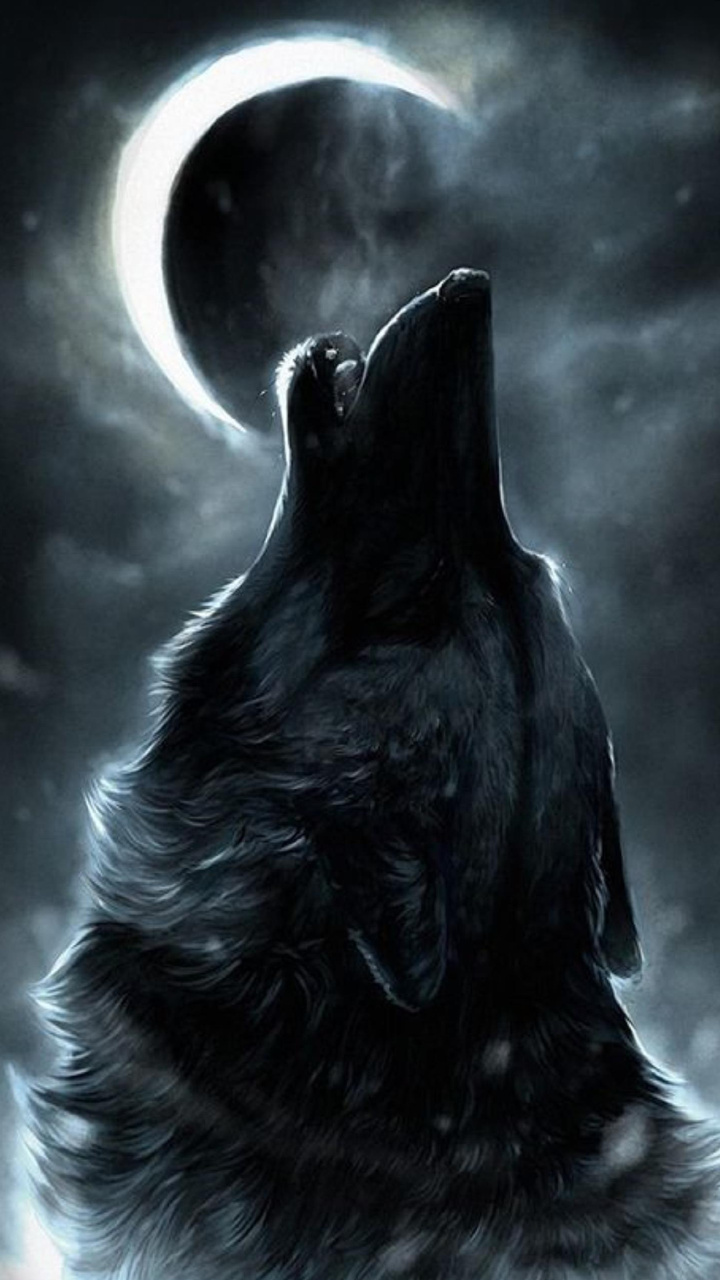 Howling Wolf Wallpaper 10925045