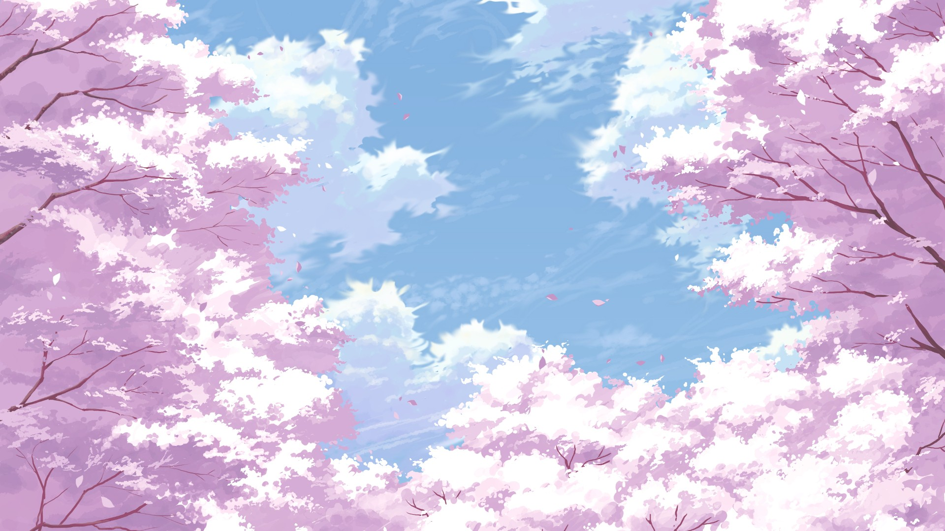 Image Cherry Blossom Flowers Painting Pink 1080p Wallpaperg