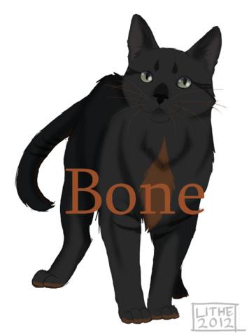 File:Bone.png