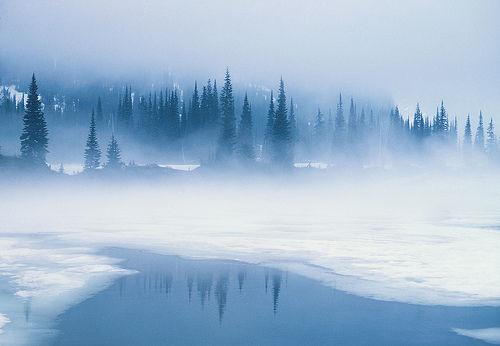 Wintermistclan