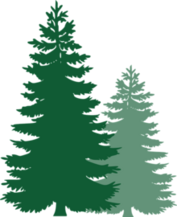 Evergreen tree pair-0