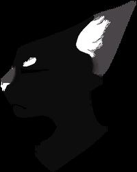Nightwatcher Transparent