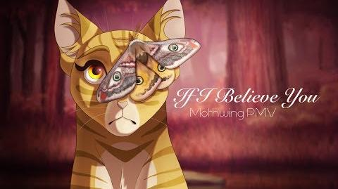 If I Believe You (Cover) - Mothwing PMV-1529124908
