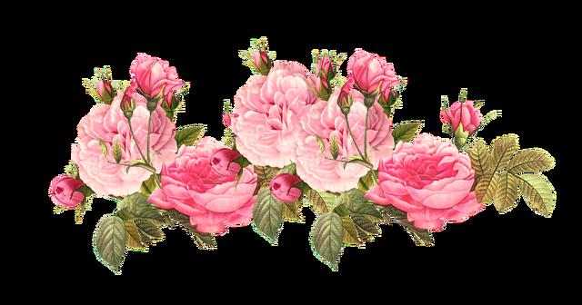 File4851255e0188e91462a811d5bdbfaeb1 Vintage Pink Roses Clipart Tumblr