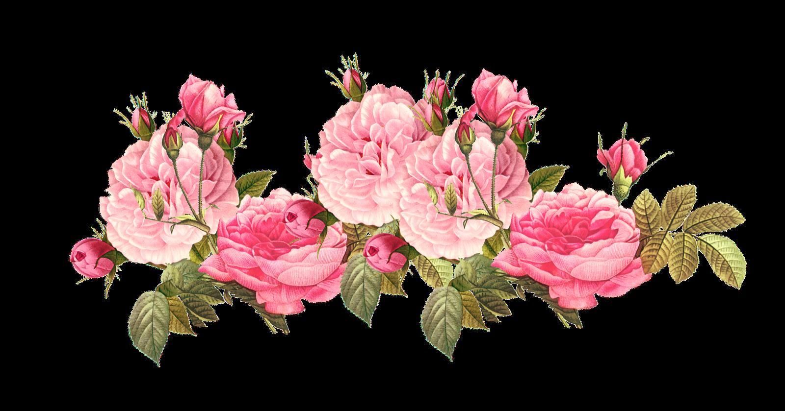 4851255e0188e91462a811d5bdbfaeb1 Vintage Pink Roses Clipart Tumblr 1600 839