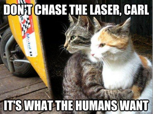 Imágenes De Funny Memes To Cheer Up