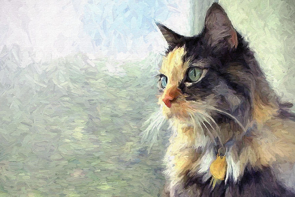 Resultado de imagem para painting cat