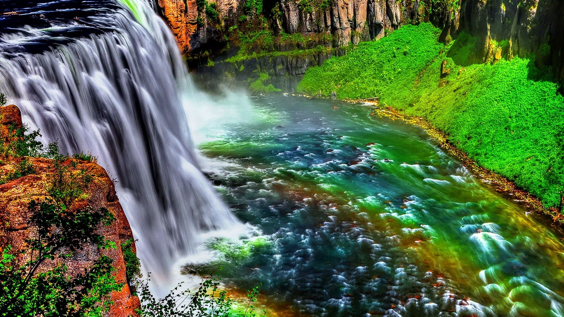 image waterfalls trees natural animals calm fishes colorful nature