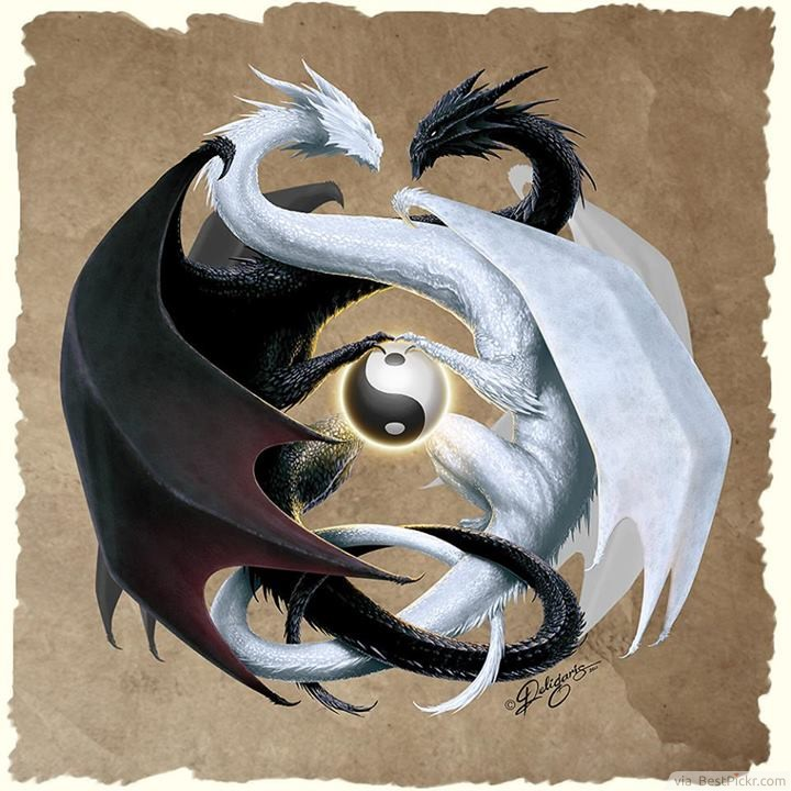 Awesome Dragon Yin Yang Tattoos Art