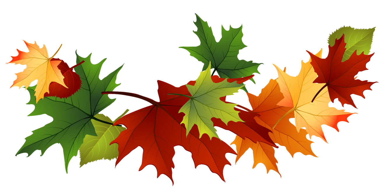 image fall autumn leaves clip art transparent background 167144 rh animal jam clans wikia com leaves clip art outline leaves clipart border