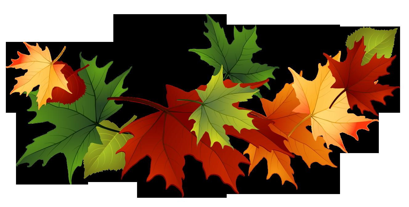 image fall autumn leaves clip art transparent background 167144 rh animal jam clans wikia com clip art fall leaves pumpkins free clip art fall leaves border