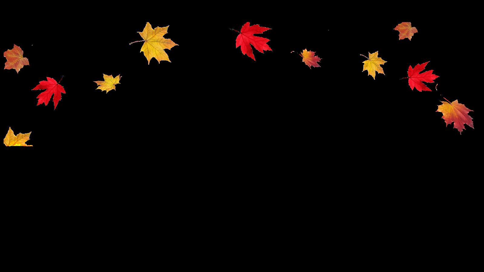 Image result for cartoon leaves falling border