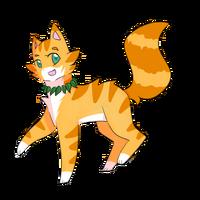 Gingerpaw6