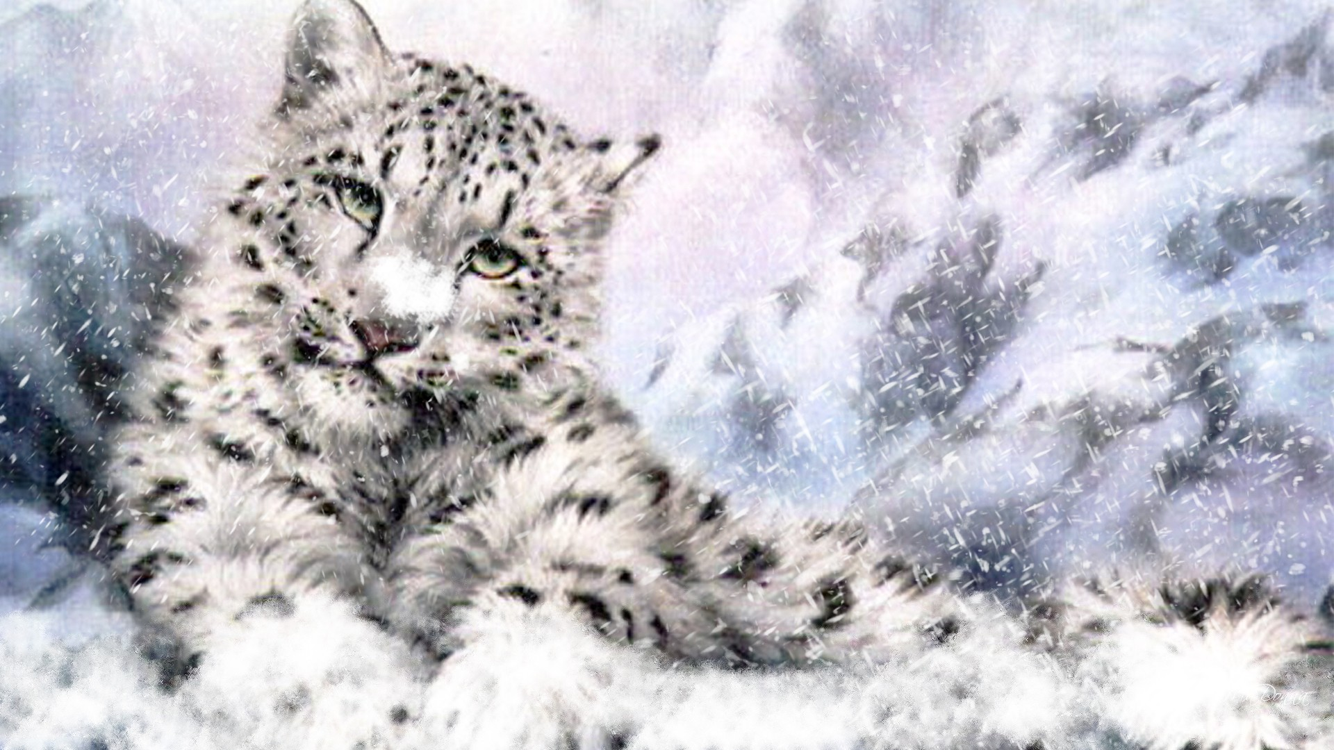 Wallpapers Of Snow Leopard HD