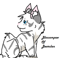 Blossompaw of Bearclan