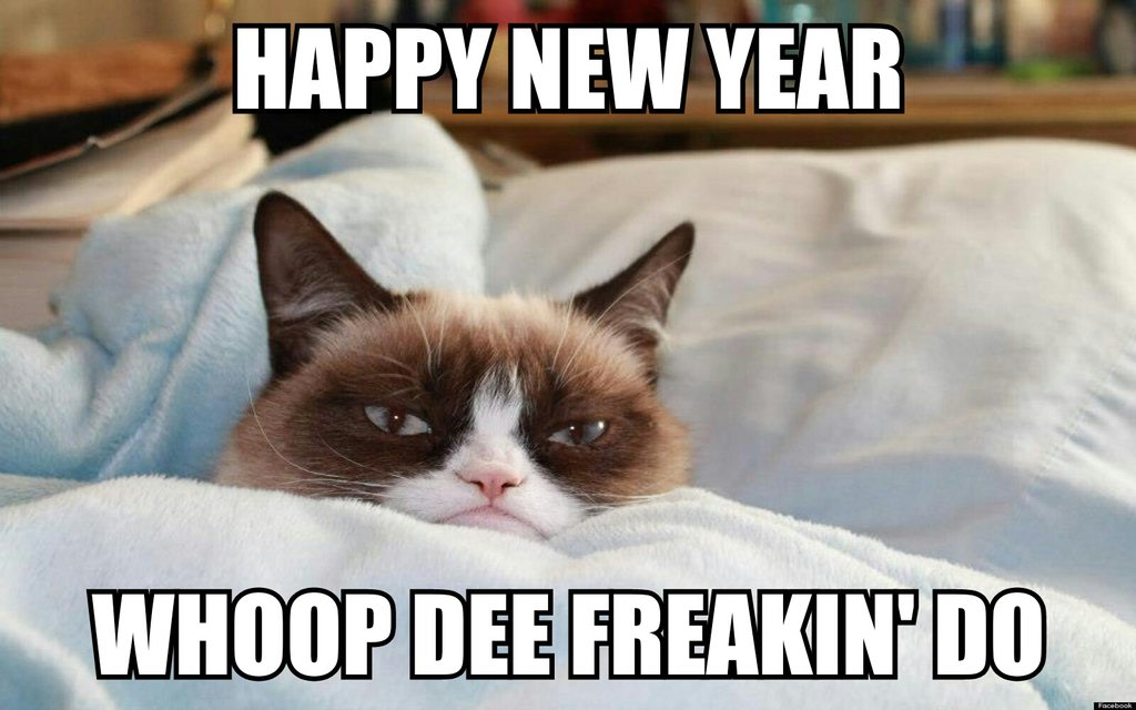 the grumpy cat happy new year d by cartoonrockfan93 d709aa5jpg