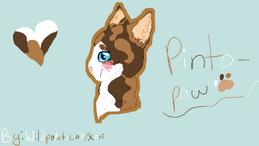 Pintopaw