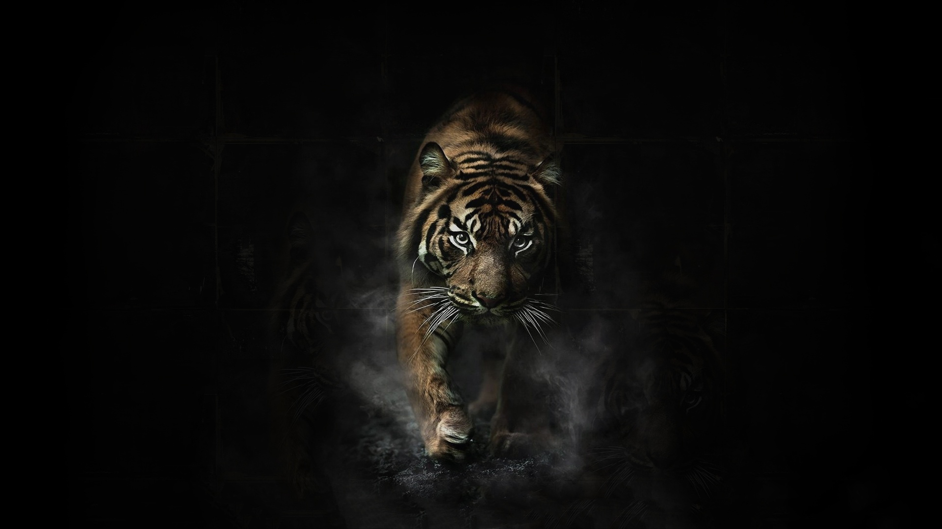 Image wallpapersxl angry tiger hd 236107 1920x1080g animal wallpapersxl angry tiger hd 236107 1920x1080g thecheapjerseys Image collections