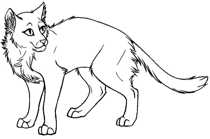 Warrior Cats Coloring Pages 23316