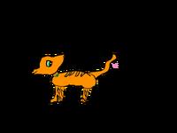 Gingerpawowo