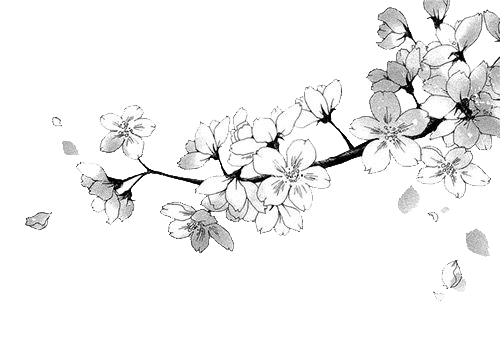 Image - Manga flower render by domicoamv-daficnv.png ... Transparent Black And White Flowers Tumblr