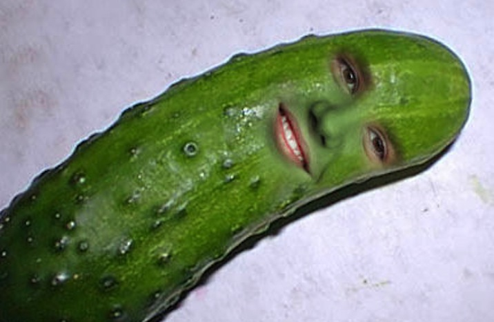 image - pickle selfie | animal jam clans wiki | fandom powered