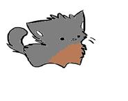 Grey's cute