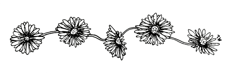 Image black and white flowers tumblr transparent 12g animal black and white flowers tumblr transparent 12g mightylinksfo